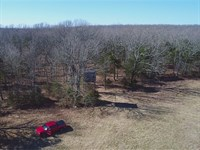 8 Acres With Spotting Tower At Lake : Branson : Taney County : Missouri
