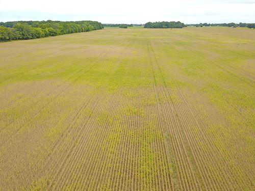 Super Parcel Of Farmland : Hilliard : Franklin County : Ohio