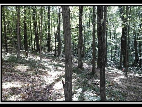 The Woods At Cohagen Tract 4 : Logan : Hocking County : Ohio
