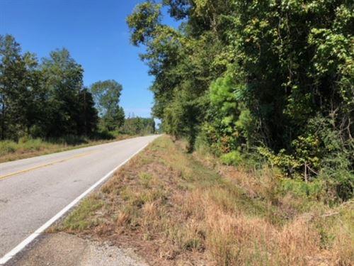 52 Acres / Enon / Washington Parish : Enon : Washington Parish : Louisiana