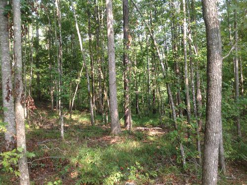 3-018 Dolbear Property : Grady : Montgomery County : Alabama