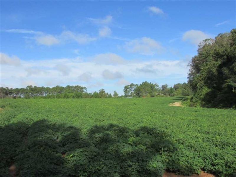 17 26 Acres Of Farmland In East Co
