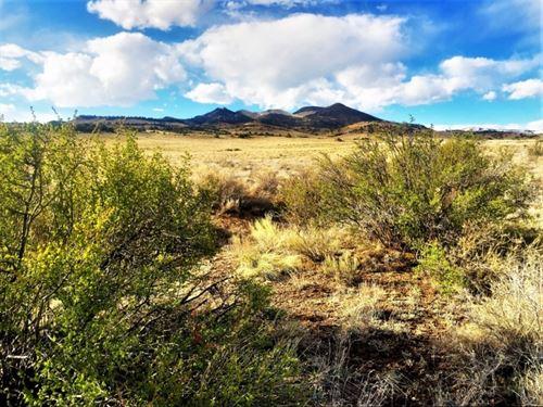 160 Acres In Rio Bravo Ranch : Del Norte : Rio Grande County : Colorado