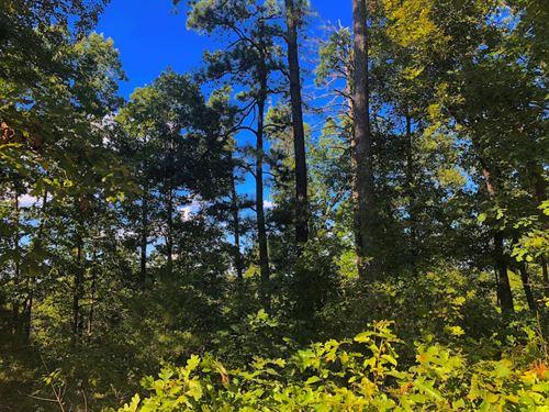 Land Joining Corp Engineers Lake : Elizabeth : Fulton County : Arkansas