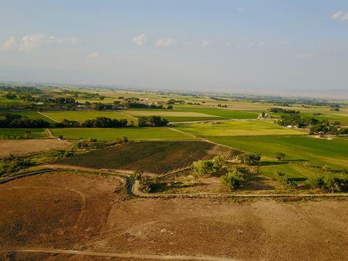 Western Colorado Irrigated Ranch : Olathe : Montrose County : Colorado
