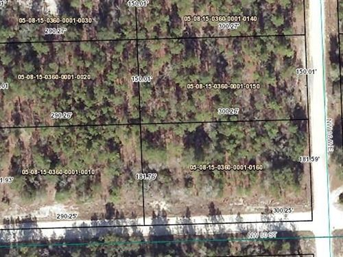 Gilchrist County Vacant Land, Bell : Bell : Gilchrist County : Florida