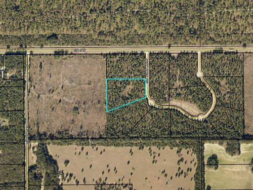 5 Acres Beautiful Woods Paved Road : Jasper : Hamilton County : Florida