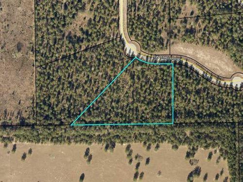 5 Acre Lot on Paved Road : Jasper : Hamilton County : Florida