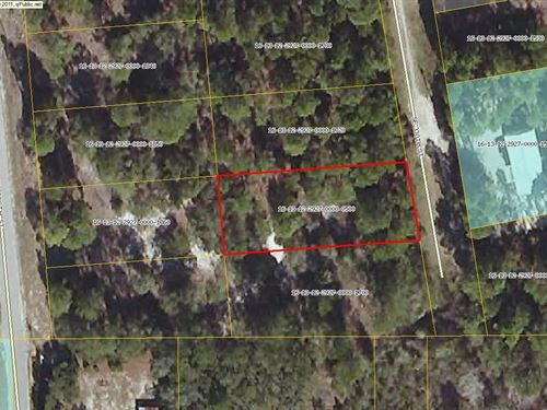 Great Location Close to Historic : Suwannee : Dixie County : Florida