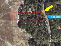 Great Home Lot Off Paved Road, 1.07 : Trenton : Gilchrist County : Florida