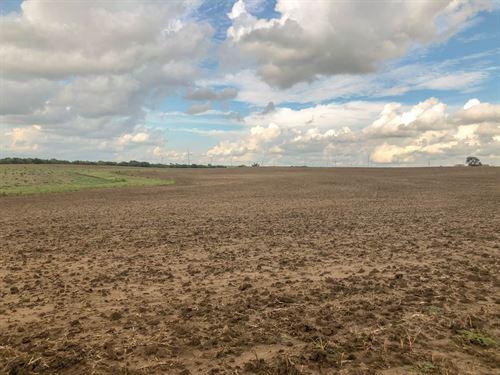 72.5 Acres Farmland Ellsworth : Ellsworth : Kansas