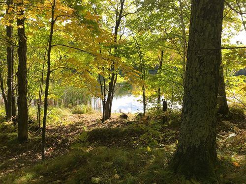 Wooded Lakeshore, Carlton, MN : Carlton : Minnesota