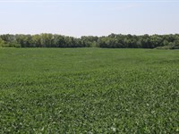 Land Mo, 36 Acres, Great Building : Fayette : Howard County : Missouri