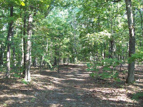 20 Acres Timber Property : Piedmont : Wayne County : Missouri