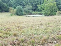 80 Acres Vacant Land Located South : Salem : Dent County : Missouri