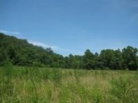 Missouri Hunting Land, 81 Acres : Stover : Morgan County : Missouri