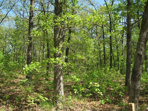 Missouri Land, 10 Acres, Morgan : Versailles : Morgan County : Missouri