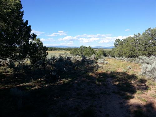 Mountain Hunting Ranch Northern NM : Chama : Rio Arriba County : New Mexico