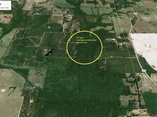 52 Acres East Texas Hunting Land : Deport : Lamar County : Texas