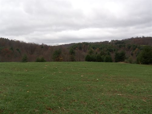 Private Building Lot Blue Ridge : Floyd : Virginia