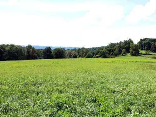35.42 Acres Land Patrick County, Va : Meadows Of Dan : Patrick County : Virginia