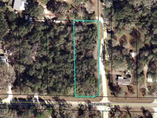 Wooded 1 Acre Lot 776438 : Old Town : Dixie County : Florida