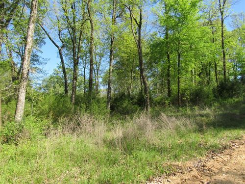 Building Lot Near Tennessee River : Clifton : Hardin County : Tennessee
