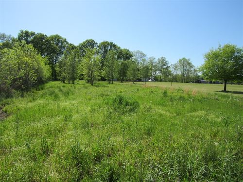 Tennessee River Front Lot For Sale : Clifton : Hardin County : Tennessee