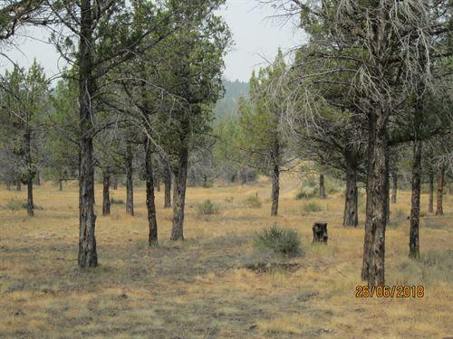 1.47 Acres of Land in Alturas, Ca : Alturas : Modoc County : California