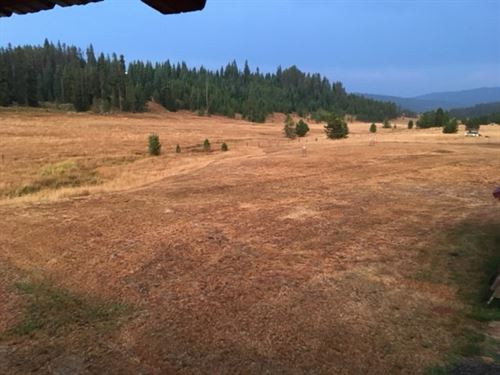 Elk City Idaho Log Home Acreage : Elk City : Idaho County : Idaho