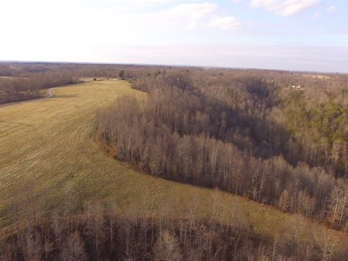 54 Acres Approx, 20 Acres Cleared : Liberty : Casey County : Kentucky
