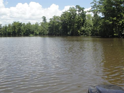 Waterfront Hunter Fisherman's : Killian : Livingston Parish : Louisiana