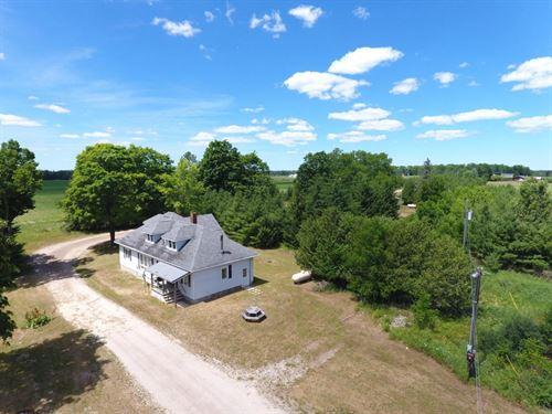 Farm Northern Michigan Hunting : Hawks : Presque Isle County : Michigan