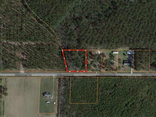 Martin County, Nc Building Lot : Williamston : Martin County : North Carolina