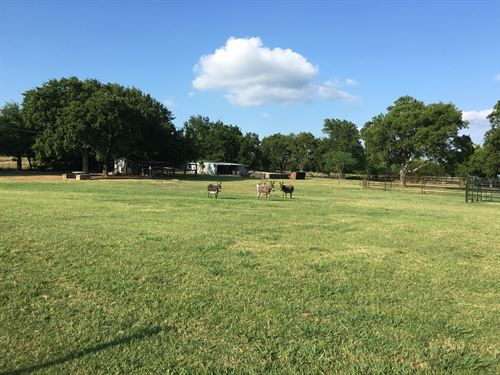 Land Property Springer Carter : Springer : Carter County : Oklahoma