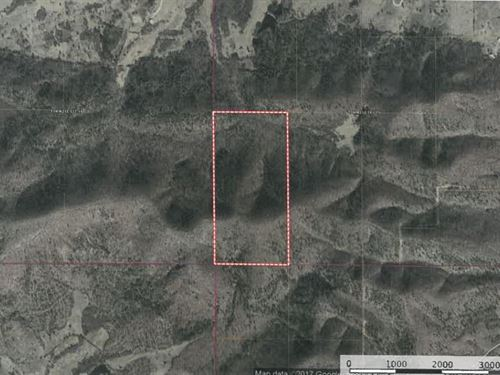 80 Acres Hunting Land Talihina, OK : Talihina : Latimer County : Oklahoma