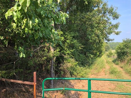 80 Acres Hunting Land Between : Sallisaw : Le Flore County : Oklahoma