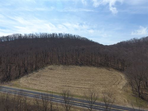 18 Acres Vacant Land For Sale in WI : Viroqua : Vernon County : Wisconsin