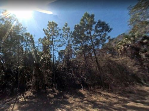 Citrus County, Fl $40,000-Neg : Crystal River : Citrus County : Florida