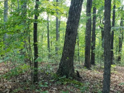 1.30Ac In Gated Cornerstone Estates : Allons : Overton County : Tennessee