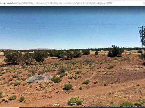 3.34 Acres In Concho, AZ : Concho : Apache County : Arizona