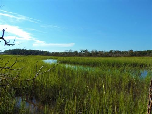 8,200 Ft, Of Marsh Frontage : Darien : McIntosh County : Georgia