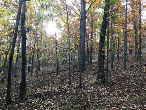 7.81 Wooded Acres Perfect For Buil : Conway : Faulkner County : Arkansas