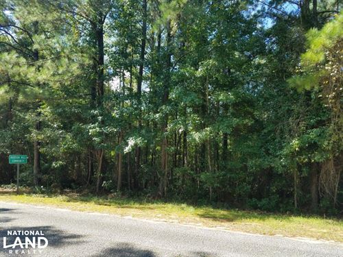 Hudson Mill Community Lot/Acreage : Elba : Coffee County : Alabama