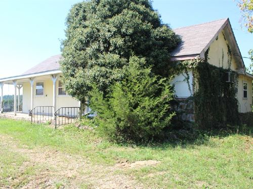 Older Homestead And 40 Acres : Fox : Stone County : Arkansas