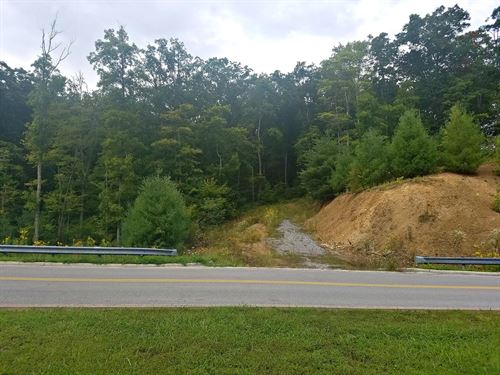 Absolute Auction, 43.34 Acres : Bluefield : Tazewell County : Virginia