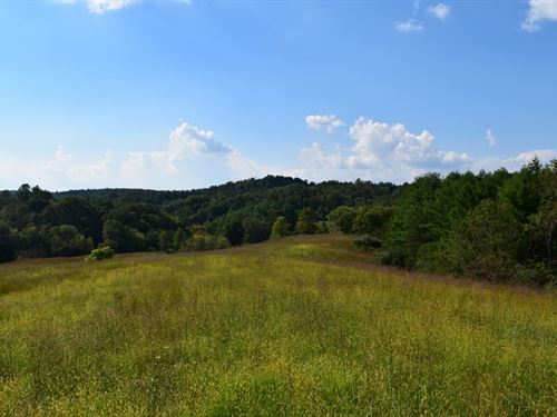 Land Auction Farm Land in Floyd VA : Floyd : Virginia