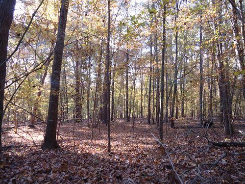 4 Ac, Big Hardwoods, Well & Septic : Jackson : Lamar County : Georgia
