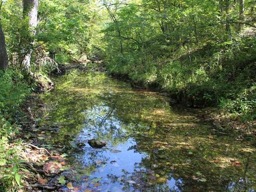 255 Acres With Live Creek in South : Camdenton : Camden County : Missouri