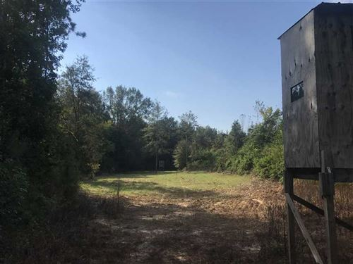 New Price, Magnolia Tract Excell : Magnolia : Marengo County : Alabama